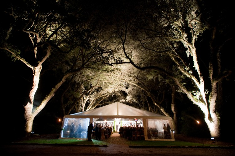 Wedding by WED in the Avenue of Oaks